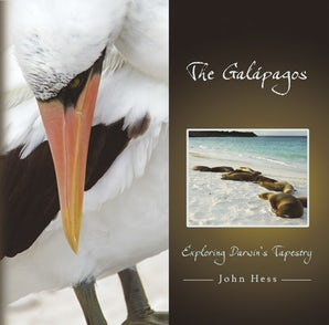 The Galápagos Hardcover  by John Hess