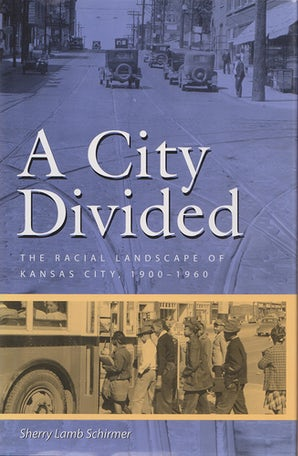 A City Divided Paperback  by Sherry Lamb Schirmer