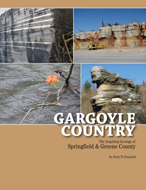 Gargoyle Country Paperback  by Jerry D. Vineyard